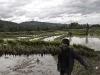 Laos, la terra del milione di elefanti 13